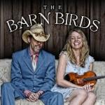 barn-birds-1